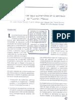 contaminacion de agua subterranea.pdf