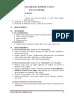 PRÁCTICA N°01-FV