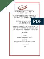 crecimiento de las mypes juliaca culminado.pdf