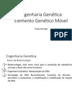 Aula 2 - Engenharia Genética - Elementos Genéticos Móveis