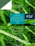 dengue-090520163353-phpapp01