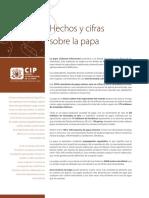 CIP-Hechos-y-cifras