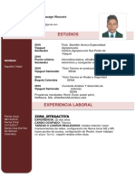 HOJA DE VIDA JULIAN.docx