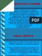 (4b) Sana Crítica