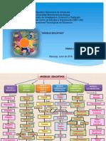 MAPA CONCEPTUAL modelos educativos II UNIDAD.pptx