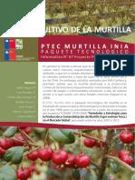 cultivo murta.pdf