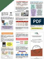 Aula 2 Folheto_como Minimizar Riscos Biolgicos
