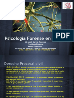 Ps Forense en Lo Civil