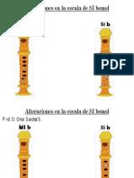 Alteraciones en la escala de SIb.pdf