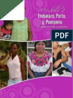 2010 Normas Del Embarazo Parto y Puerperio Mspas