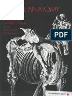 atlas-animal-anatomy-for-artists.pdf