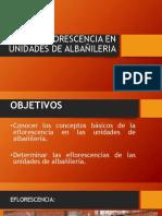 Eflorescencia en Unidades de Albañileria