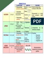 BiomolÉculas Cuadro Comparativo