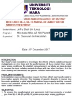Progress Report Presentation 24.11.17