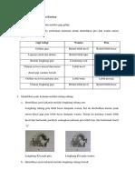93450293-Identifikasi-Jenis-Kelamin-Korban.docx