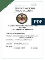 TRABAJO FINAL ALPAMARCA.docx