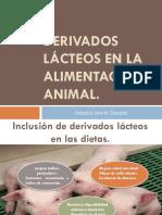Derivados Lácteos en La Alimentación Animal