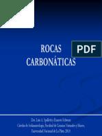 carbonatos_2010.pdf