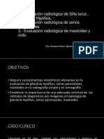 Clase Silla Turca Senos Paranasales Mastoides (1)