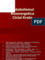 74_Metabolismul