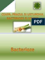 Tirsu-Pintea Matei - Ceapa, Prazul Si Usturoiul - Viroze Si Bacterioze