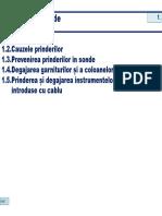Prinderi1