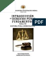 Introducción al Derecho Penal - César Busato.pdf
