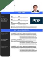 1-curriculum-vitae-cronologico-azul.docx