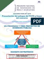 Enfoque Pnipa y Bases - Concurso Pnipa 2017-2018