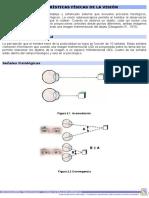 Características Físicas de La Visión
