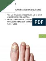 Ejercicios_onicomicosis_huesosdelpie
