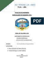 Informe Finalizado Para La Feria - m.s. II.docx