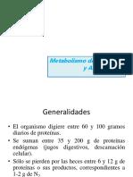 11) Metabolismo de Los Aminoácidos y Proteínas (Transaminación y Desaminación Oxidativa) (1)