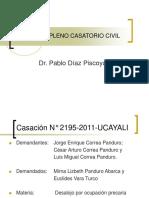 PLENO_CASATORIO (1)