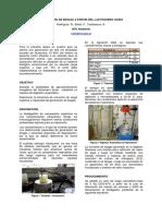 Produccion Biogas Suero