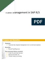 Travel Management in SAP.pptx