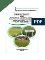 it2005proyectoarroz.pdf