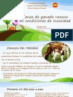 Crianza de ganado vacuno en condiciones de inocuidad.pptx
