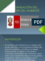 Diapositivas Organizacion Del Ministerio