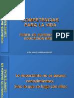 definicioncompetenciasbasicas-1216768675850614-9