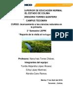 Reporte de La Visita Al Tortugario en Cuyutlán