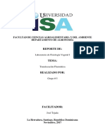 G-5 Reporte de Translocación Floematica