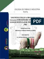 WHERNÁNMC7 INFORMES  DE TECNOLOGÍA DE FIBRAS E INDUSTRIA TEXTIL
