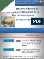 03 Pasado, Presente y Futuro Del Principio Constitucional