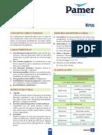 B_5ºAño_S5_Virus.pdf