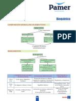 B_5ºAño_S2_Bioquimica.pdf