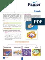 B_5ºAño_S6_Citologia.pdf