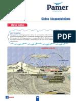 B_1°Año_S4_Ciclos biogeoquímicos