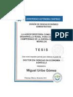 Tesis Doctorado Miguel Uribe Gomez