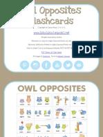 Owl_Opposites_Flashcards.pdf